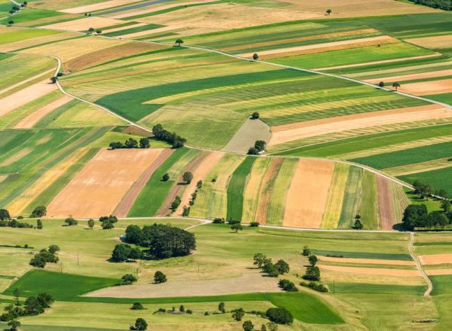 Trükkös módszerrel próbálta kicsalni a gazdák földjeit egy vállalkozó