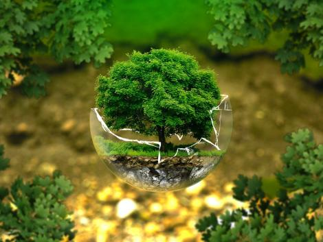 Nagy István: közös felelősségünk, hogy a Föld természeti értékekben gazdag otthonunk legyen