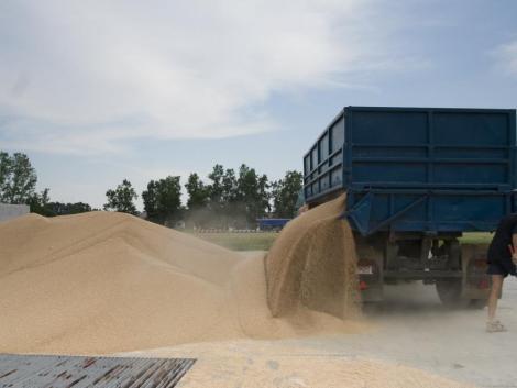 A szélsőséges időjárás és a koronavírus sem tudja visszafogni az orosz gabonatermést?