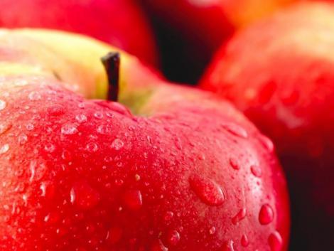 Messze az ötéves átlag alatt a hozamok Európa legnagyobb almatermesztőjénél
