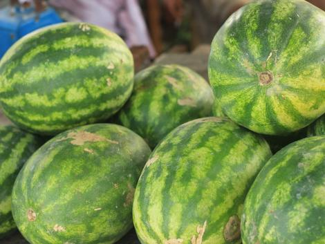 Hogyan válasszunk dinnyét? Tippek a tökéletes gyümölcs vásárlásához