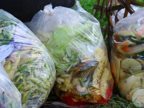 Elképesztő mennyi élelmiszer végzi a szemétben Magyarországon