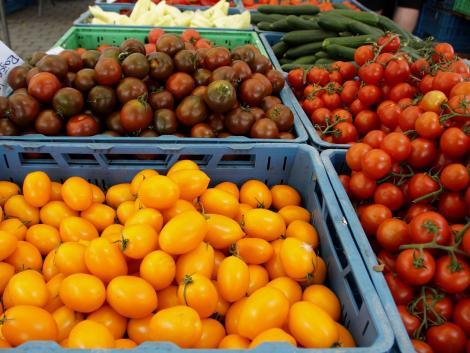 Az amerikai agrárminiszter indokolatlannak tartja a génmódosított növények, vagy a hormonkezelt marhahús EU-s tilalmát