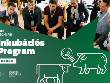 Nagy lehetőség a magyar startup-ok számára! Már lehet jelentkezni a NAK TechLab programjára
