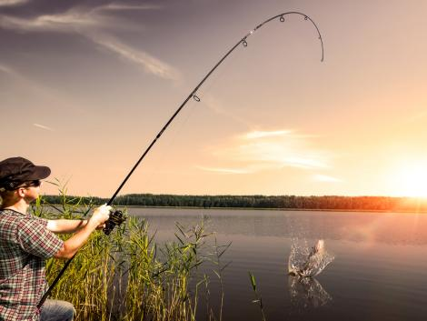 Rombolja vagy építi a szabadidős horgászat a tavak élővilágát?
