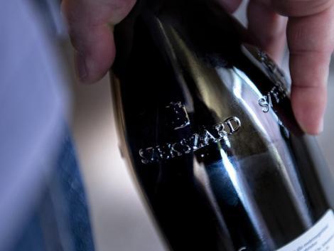 Európában minden ötödik bor hamis