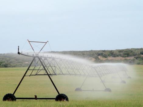Útmutatóval segíti az öntözésfejlesztést az agrárkamara