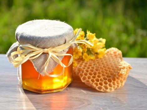 20 méhcsaládot vásárolt a Takarékbank egy új együttműködés keretében
