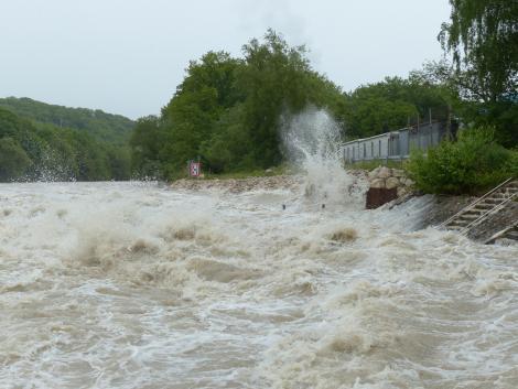 Több mint egymillió sertést pusztított el az özönvíz Kínában
