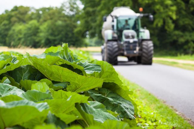 traktor közút