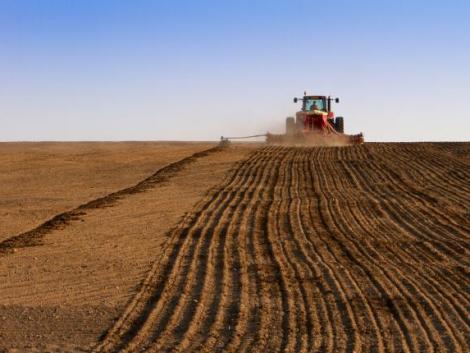 A szárazság megnehezítette az őszi talajelőkészítést és a vetést