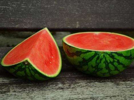 A görögdinnye más növénybe való átoltása javítja az ellenálló képességét