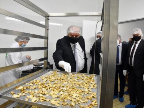 248 millió forintból épült szarvasgomba-feldolgozó üzem Szolnokon