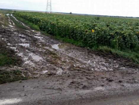 Komoly veszélyt jelent a közlekedőkre a mezőgazdasái gépek által az utakra felhordott sár