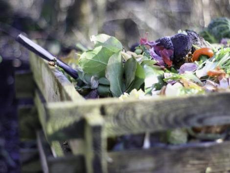 Égetés helyett gazdaságos hulladékhasznosítás – válaszd a komposztot!