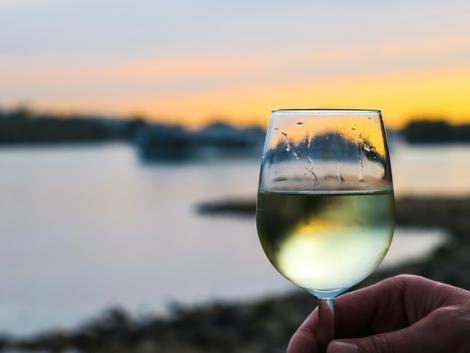 Egyre népszerűbb a borturizmus