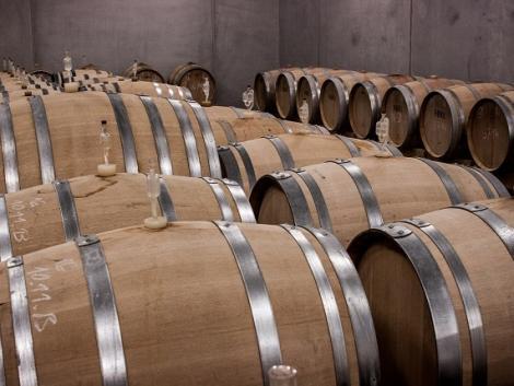 Nyilvános a borászati termékek lepárlásával foglalkozó üzemek listája