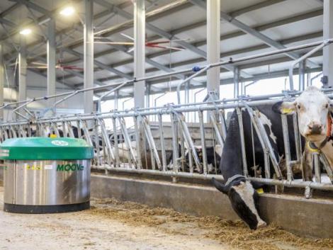 Elképesztő termelésnövekedést produkált az új mezőhegyesi robotizált tehenészet