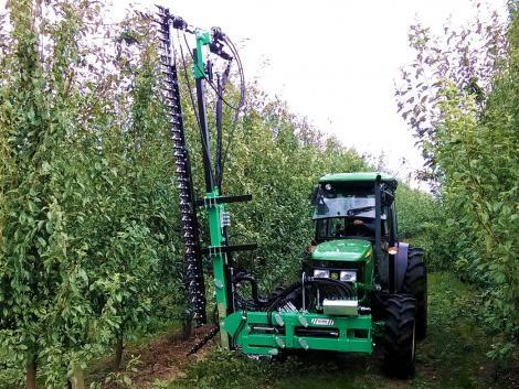 Metszés különleges gépekkel és profi metszőollókkal – Segítünk választani!
