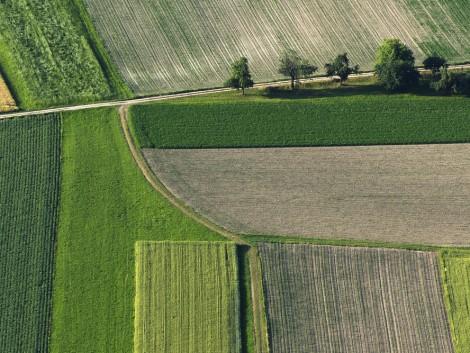 Új szervezet kezeli a földügyeket
