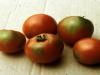 A kálium hiánya rengeteg rendellenességet okozhat a növényekben