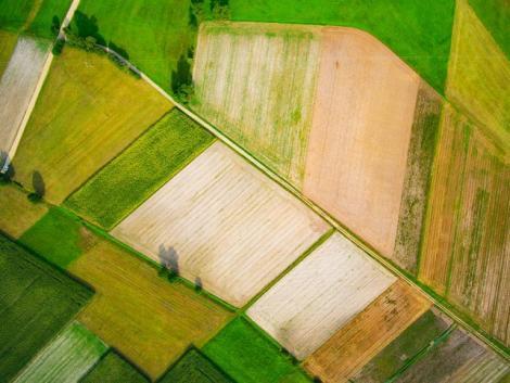 5 millió hektár termőföldet loptak el a politikusok Ukrajnában