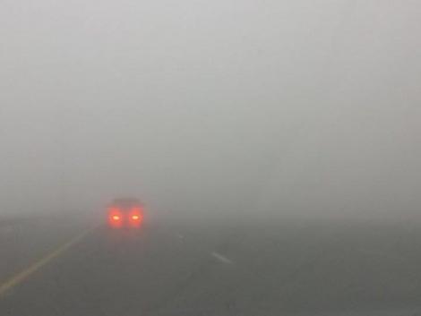 Köd és élénkülő szél...
