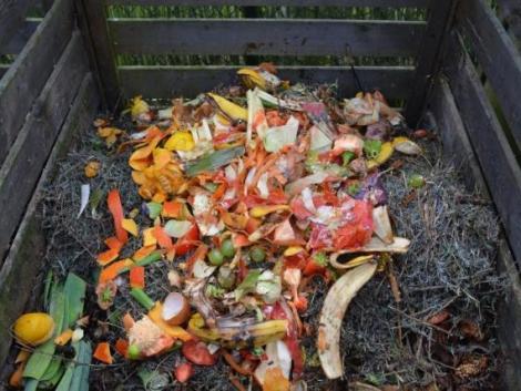 Komposztálás kezdőknek – így vágj bele akár már holnap!