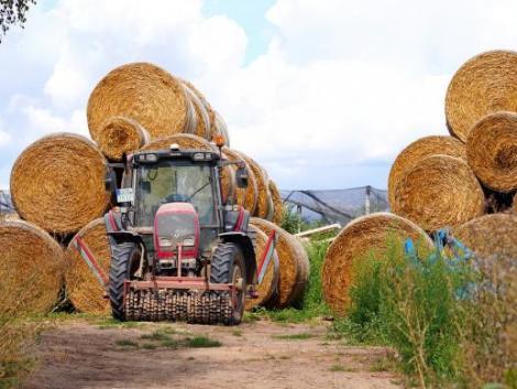 Meghosszabbodik több vidékfejlesztési pályázati felhívás kötelezettségvállalási időszaka