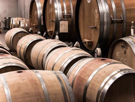 Magyar borokkal ismerkedtek a finnek