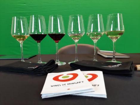 Németországban népszerűsítik a magyar borokat