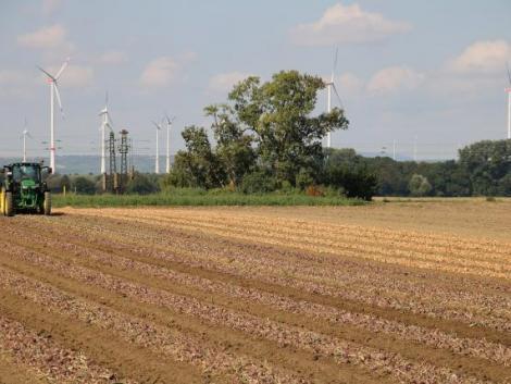 Van esély a termőföldárak csökkenésére?