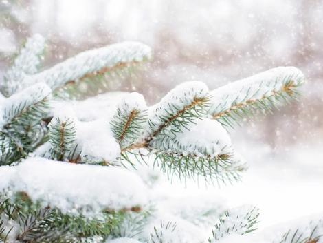 Mit hoz december időjárása: fagyokat vagy jótékony hótakarót, netán fehér karácsonyt?