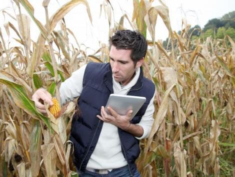 Új mobilalkalmazás segíti a növényvédőszer-használatot