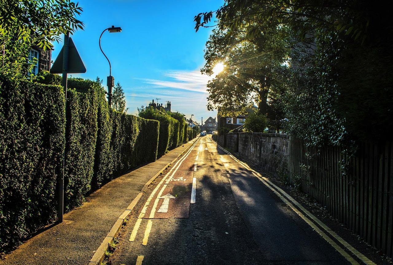 utca, fa