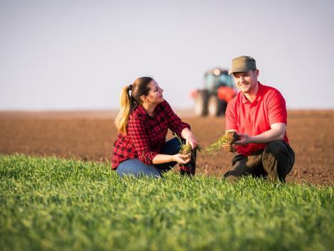 Hétfőtől lehet jelentkezni az agrár-felsőoktatásba