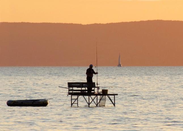 horgászat, Balaton