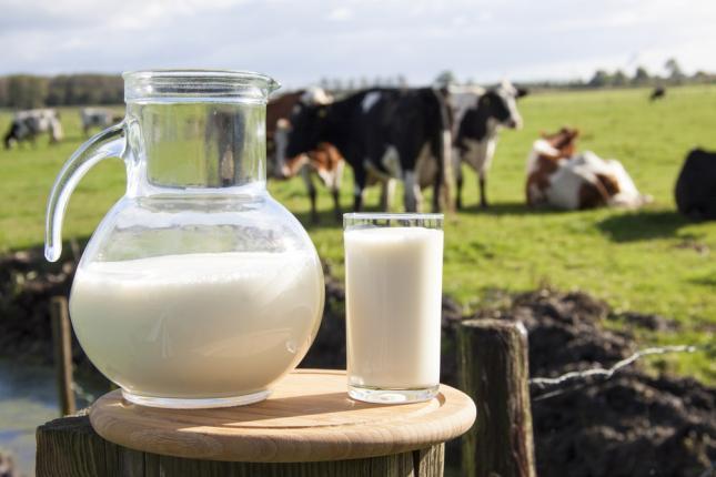 mesterséges tej