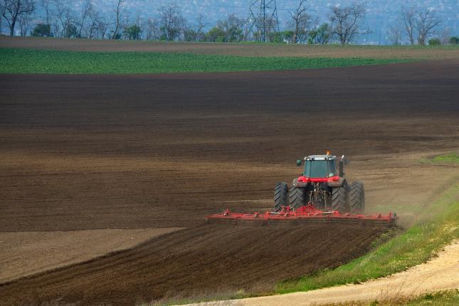 osztatlan közös földtulajdon felszámolása