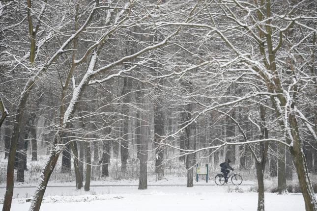 Kerékpáros a behavazott debreceni Nagyerdőben 2021. január 13-án