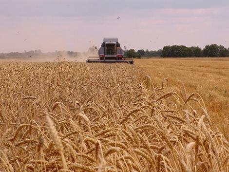 Mi várható 2021-ben a magyar agráriumban? - VIDEÓ