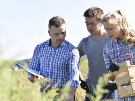 Fenntartható precíziós kertészeti szakmérnök/szakember szakirányú továbbképzés indul
