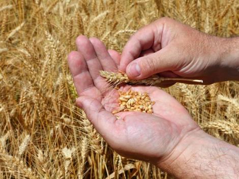 Élelmezésbiztonságról, a helyi termelők támogatásáról és a gazdák tiszteletének biztosításáról is tárgyaltak