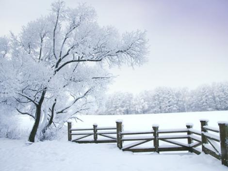 Havazás miatt több megyére és a fővárosra is figyelmeztetést adott ki a meteorológiai szolgálat
