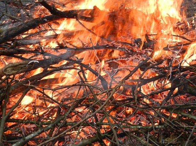 tűzgyújtási tilalom