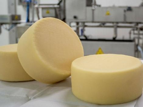 70 év után megszűnik a tejfeldolgozás Zalaegerszegen