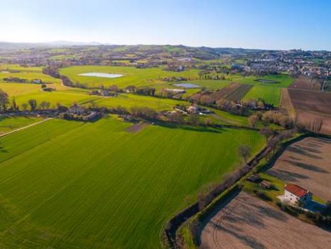 Földforgalmi törvény: egyszerűsödtek a földcsere szabályai