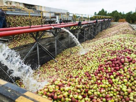 Nagy lépésre szánta el magát az Agrárminisztérium