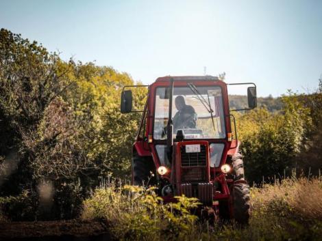 Kisgazda, állattartó, terménytároló-szárító, kertészet – Ne maradjon le 2021 pályázatairól!