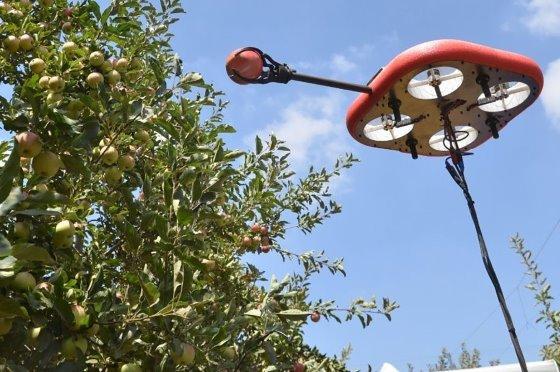 Gyümölcsszedő drón.